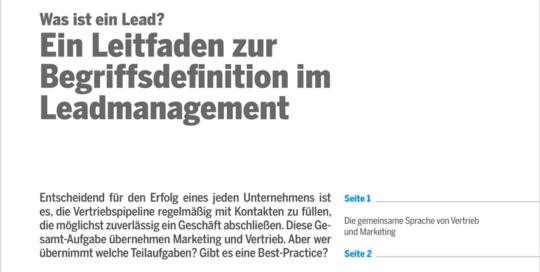 leadmanagement_2_ansicht