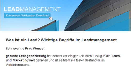 leadmanagement_2_mailing_vorschau